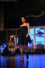 Sania Sheikh at Audi A4 launch with Gayatri Khanna_s fashion show on July 10th 2008(11).jpg