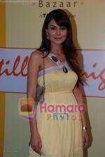 Anchal Kumar at the opening of Star Bazaar in Lokhandwala on 17th July 2008(5).JPG
