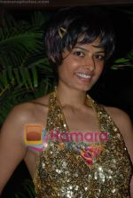 at Harry Anand_s Bash on 16th July 2008(42).JPG