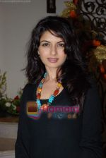 Bhagyashree at the party hosted by Kaanchan Adhikari on August 13th 2008 (4).JPG