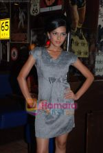 at Arshiya Fakih collection showcase at TGIF in infinity Mall on August 15th 2008 (17).JPG