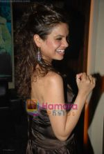 Aanchal Dwivedi at Swastik Pictures bash for Amber Dhara in Vie Lounge on 29th August 2008 (8).JPG
