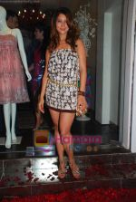 Kim Sharma at Anna Singh_s Store Launch on 5th September 2008 (2).JPG