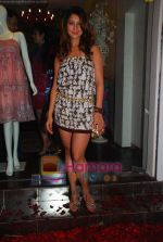 Kim Sharma at Anna Singh_s Store Launch on 5th September 2008 (3).JPG