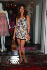 Kim Sharma at Anna Singh_s Store Launch on 5th September 2008 (4).JPG