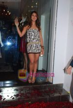Kim Sharma at Anna Singh_s Store Launch on 5th September 2008 (8).JPG