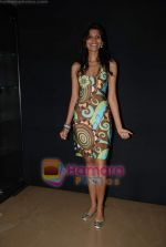 Megha Kawale at the Showcase of Rocky S Club collection at Blender Pride Tour party in Sahara Star on 9th September 2008 (4).JPG