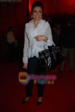 Queenie Dhody at Ashish Sonis Show at HDIL Couture Week on 17th September 2008 (4).JPG