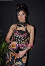 Divya Khosla at Himesh Reshammiyas live performance in Concert for Karzzz Curtain Raiser in Andheri Sports Complex on 12th october 2008 (12).JPG