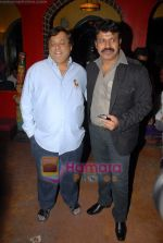 Tinu Verma, David Dhawan at the launch of Meghna Patel_s debut music video _Golden Babe_ on 14th October 2008 (2).JPG