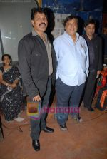 Tinu Verma, David Dhawan at the launch of Meghna Patel_s debut music video _Golden Babe_ on 14th October 2008 (4).JPG