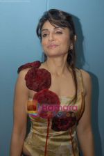 Queenie Dhody at Lakme Fashion Week 2008 - Day 2 on 21st October 2008 (36).JPG