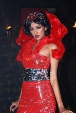 Iris Maity at Lesli Lewis shoot in Sonam Studio, Sunmill compound on 30th October 2008.JPG