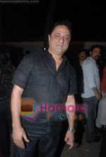 Harry Baweja at Golmaal Returns success bash in Vie Lounge on 18th November 2008 (60).JPG