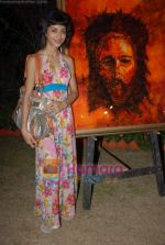 Akanksha Nanda at The Mahatma a tribute to non-violence in Point of View Art Gallery on 19th November 2008  (2).JPG
