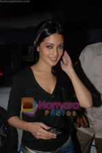 Riya Sen at Yuvvraaj special screening in globus on 20th November 2008(12).JPG