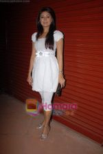 Sonia Kapoor at the launch of Kamia Malhotra new club Hungama in Juhu on 21st November 2008(2).JPG