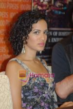 Anoushka Shankar at the Press Meet in Sahara Star on 4th December 2008 (19).JPG