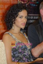Anoushka Shankar at the Press Meet in Sahara Star on 4th December 2008 (20).JPG