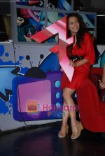 Anmol Singh at the Launch of MTV_s New Shows on 12th December 2008 (2).JPG