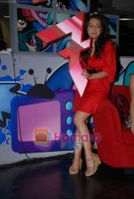 Anmol Singh at the Launch of MTV_s New Shows on 12th December 2008 (9).JPG