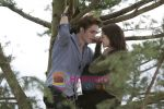 Kristen Stewart, Robert Pattinson (5) in still from the movie Twilight.jpg