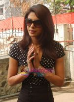 Priyanka Chopra at Multispeciality Medical Camp in Kasturi Polyclinic, Andheri, Mumbai on 13th December 2008 (17).JPG