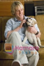 Owen Wilson in still from the movie Marley and Me.jpg