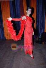 at Sandip Soparkar_ s students showcase in Enigma on 20th December 2008 (66).JPG