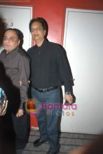 at exclusive screening of Ghajini in PVR on 24th December 2008 (8).JPG