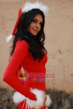 Sherlyn Chopra spends Christmas with kids in Bombay Central on 25th December 2008 (4).JPG