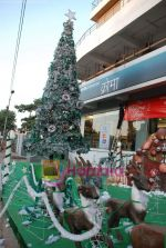 at biggest Christmas tree in Croma, Juhu on 25th December 2008 (5).JPG