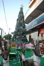 at biggest Christmas tree in Croma, Juhu on 25th December 2008 (6).JPG