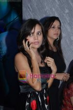 at the launch of C2V Pub in Kandivali on 26th Dec 2008 (24).JPG