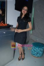 at the launch of C2V Pub in Kandivali on 26th Dec 2008 (29).JPG