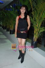 at the launch of C2V Pub in Kandivali on 26th Dec 2008 (39).JPG