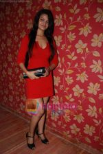 at the launch of C2V Pub in Kandivali on 26th Dec 2008 (80).JPG