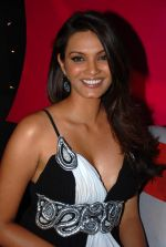 Diana Hayden at Miss Teen press meet in JW Marriott on 27th December 2008 (35).JPG