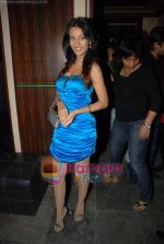 Amrita Rao at Victory film music launch in Vie Lounge on 28th December 2008 (17).JPG