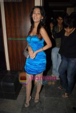 Amrita Rao at Victory film music launch in Vie Lounge on 28th December 2008 (18).JPG