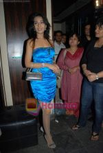 Amrita Rao at Victory film music launch in Vie Lounge on 28th December 2008 (25).JPG
