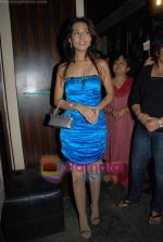 Amrita Rao at Victory film music launch in Vie Lounge on 28th December 2008 (26).JPG