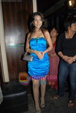 Amrita Rao at Victory film music launch in Vie Lounge on 28th December 2008 (37).JPG