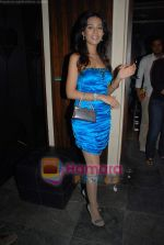 Amrita Rao at Victory film music launch in Vie Lounge on 28th December 2008 (9).JPG