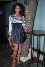 Sandhya Shetty at Vie Lounge New Year_s pre-bash on 29th December 2008 (3).JPG