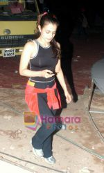 Amisha Patel at Country Club gig in Andheri on 30th December 2008 (4).JPG