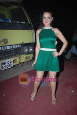 Amisha Patel at Country Club bash in Andheri on 31st December 2008 (4).JPG