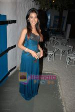 Amrita Rao at Daboo Ratnani_s star studded calendar launch on 5th Jan 2009 (2).JPG