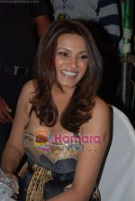 Diana Hayden at Nivea Femina Miss India wild entry round in Inorbit Mall on 11th Jan 2009 (3).JPG