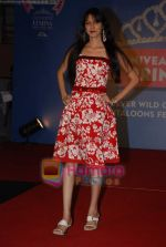 at Nivea Femina Miss India wild entry round in Inorbit Mall on 11th Jan 2009 (110).JPG